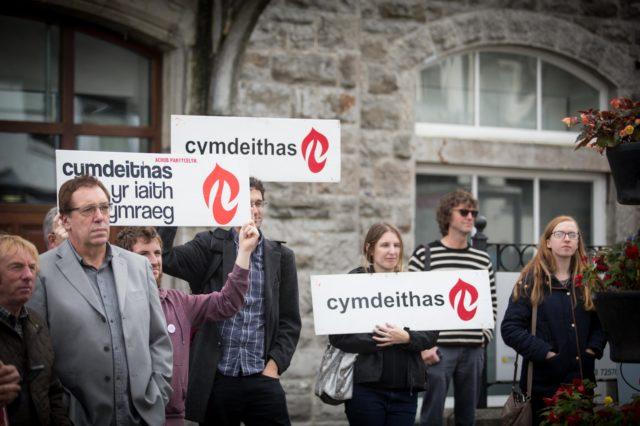 Protestwyr Iaith