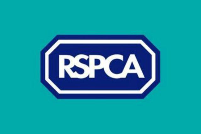 Logo RSPCA