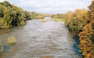 Afon Gwy