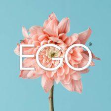 Aberystwyth Ego