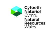 Logo Cyfoeth Naturiol Cymru